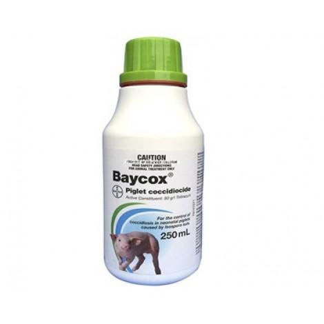Baycox Piglet Coccidiocide 250mL