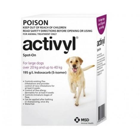 Activyl for Dogs 20-40kg (44-88lb) 6 Pack