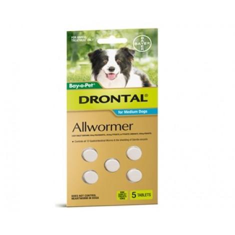 Drontal Allwormer 10kg (22lb) - 5 Tabs
