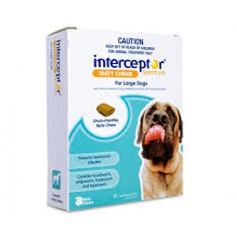 Interceptor Spectrum Large Blue