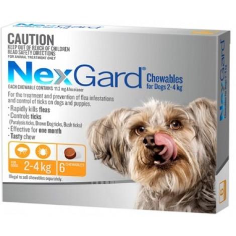 Nexgard Orange Extra Small Dog