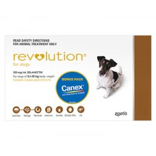 **Revolution Small (Brown) 3 Pack