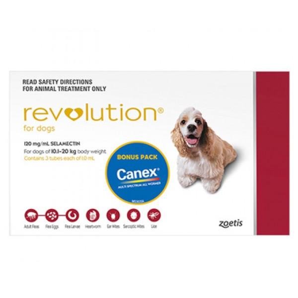 Revolution Medium Red Dogs Puppies