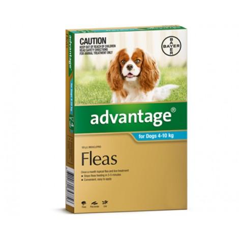 Advantage Medium (Aqua)