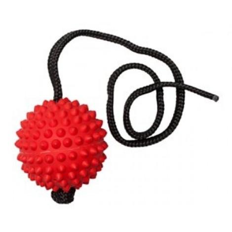 Aussie Dog Long Ball Hard Red