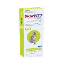 Bravecto Spot On for Cats Green Small