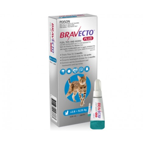Bravecto Plus for Medium Cats Blue