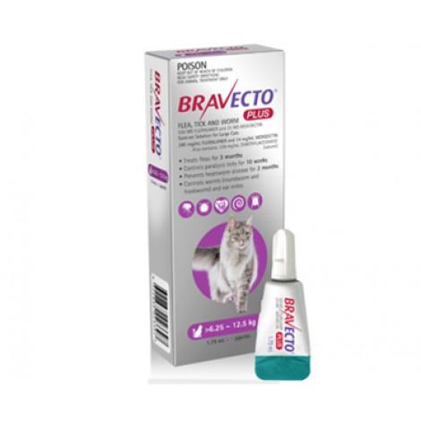 Bravecto Plus for Large Cats Purple
