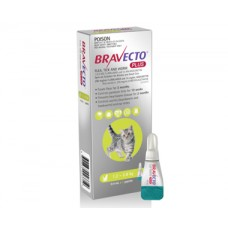 Bravecto Plus for  Small Cats Green