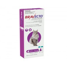 Bravecto Spot On for Cats Purple Large