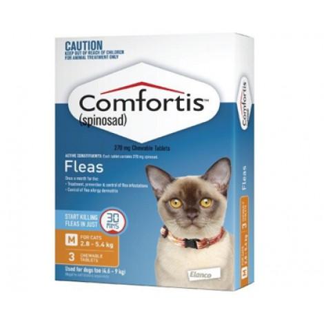 Comfortis Orange Cat