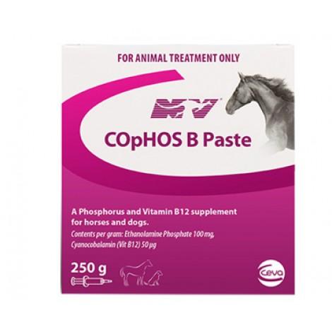 Cophos B Paste 250g