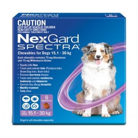 Nexgard Spectra Purple Large Dog