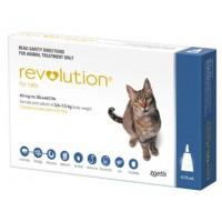 Revolution Cat (Blue)